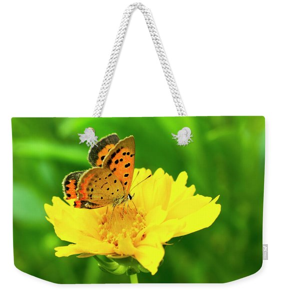 American Copper Butterfly Weekender Tote Bag