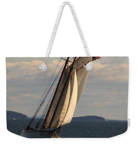 American Eagle In A Good Wind Weekender Tote Bag