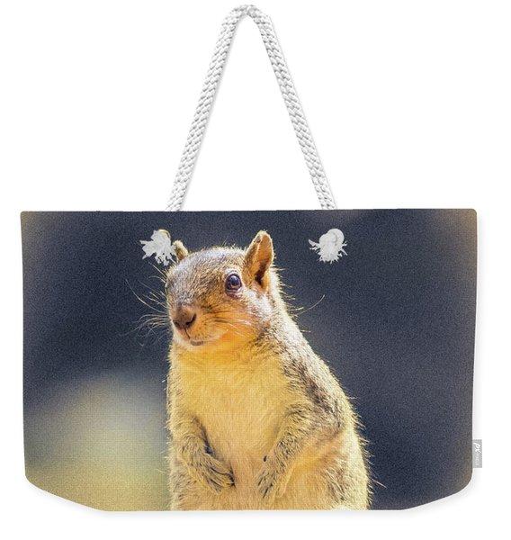 American Red Squirrel Weekender Tote Bag