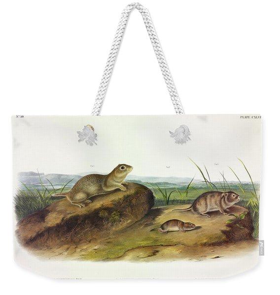 American Souslik, Oregon Meadow Mouse, Texan Meadow Mouse Weekender Tote Bag