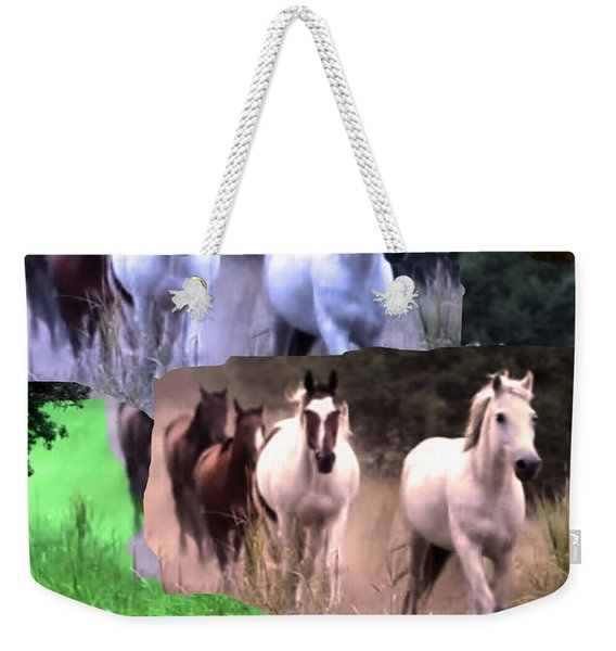 American Wild Horse Mustang On Posters Canvas Pillows Curtains Duvetcovers Phone Cases Tshirts Jerse Weekender Tote Bag