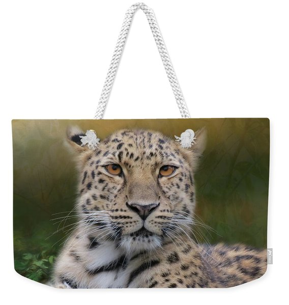 Weekender Tote Bag featuring the photograph Amur Leopard by Patti Deters