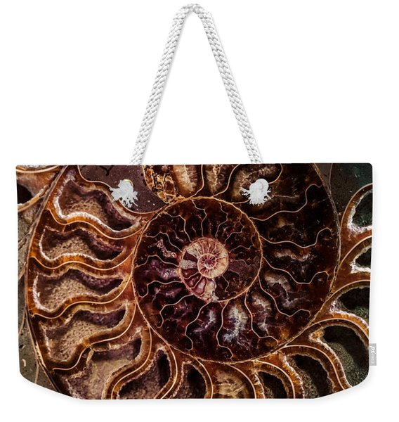Weekender Tote Bag featuring the photograph An Ancient Shell by Jaroslaw Blaminsky