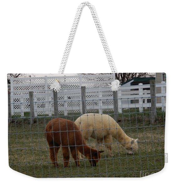 An Evening Graze Weekender Tote Bag