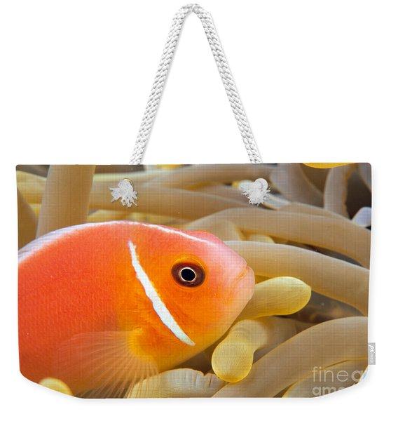 Anemonefish Weekender Tote Bag