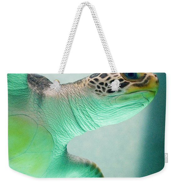 Weekender Tote Bag featuring the photograph Angel 2 by Skip Hunt