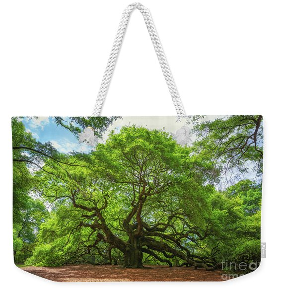 Angel Oak Tree In South Carolina  Weekender Tote Bag