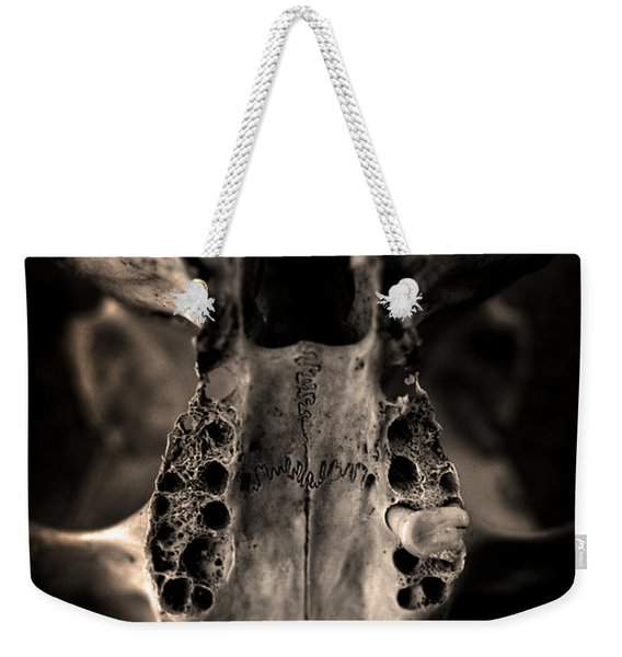 Weekender Tote Bag featuring the photograph Animal Skull by Clayton Bastiani