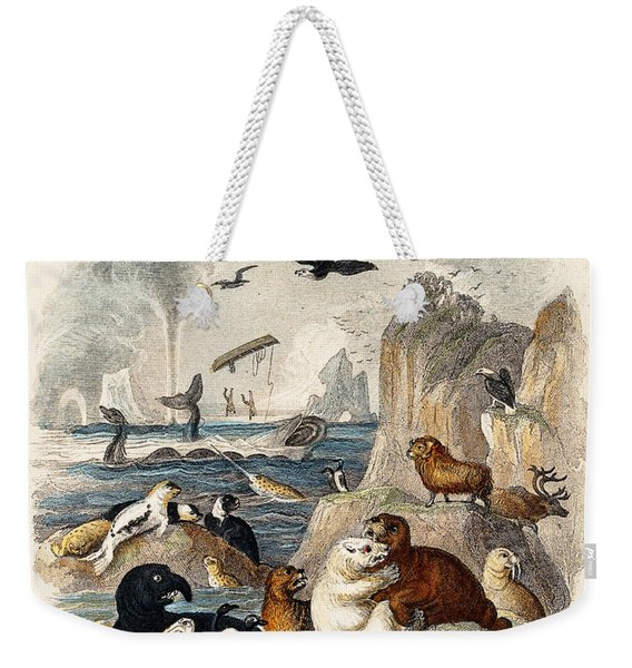 Animals On Sea Rock Face Goldsmith 1774 Weekender Tote Bag