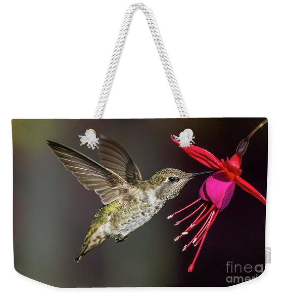 Anna Immature Hummingbird Weekender Tote Bag