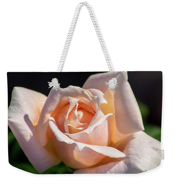 Another Beautiful Pink Rose Weekender Tote Bag