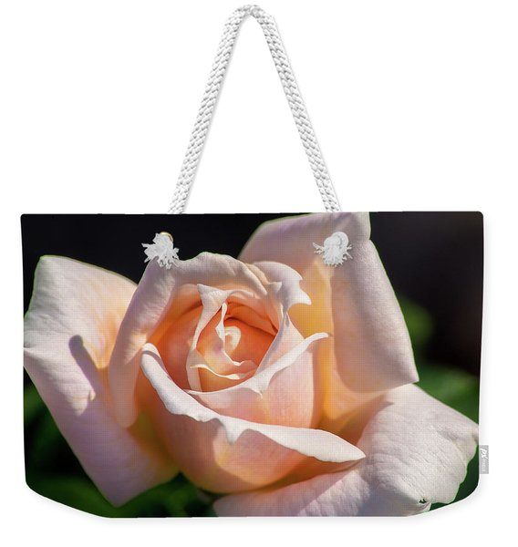 Another Beautiful Pink Rose Weekender Tote Bag