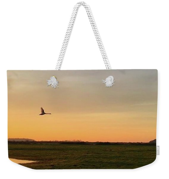 Another Iphone Shot Of The Swan Flying Weekender Tote Bag