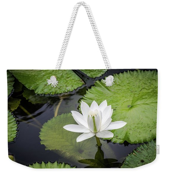 Another Lily Weekender Tote Bag