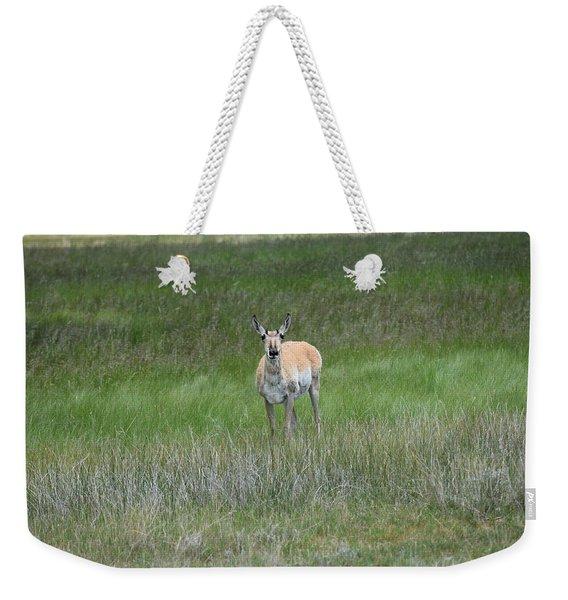 Prong Horned Antelope Lake John Swa Co Weekender Tote Bag