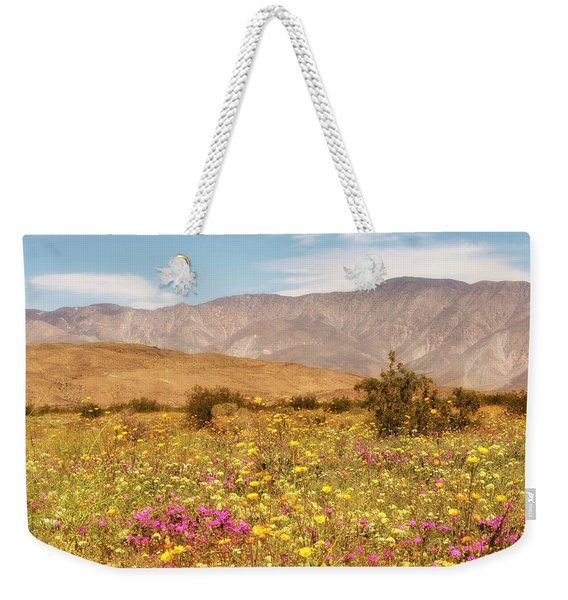 Weekender Tote Bag featuring the photograph Anza Borrego Desrt Flowers by Michael Hope