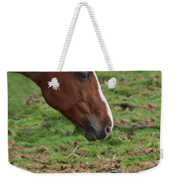 Appearing Injured Weekender Tote Bag