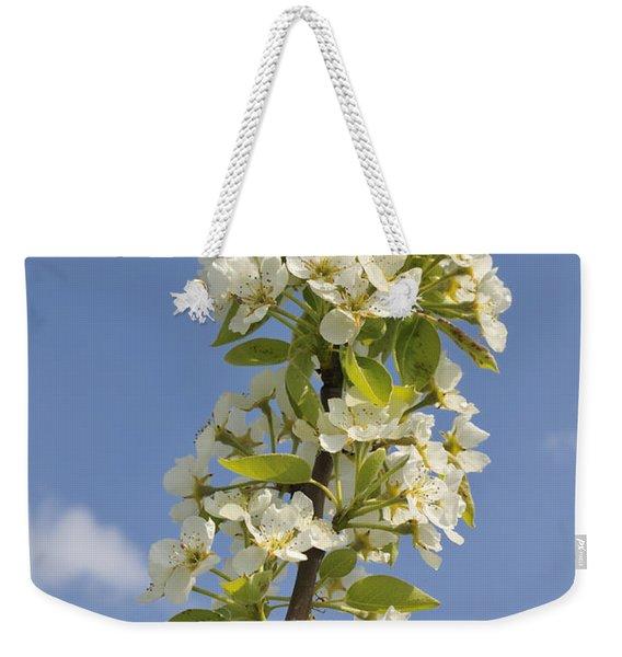Apple Blossom In Spring Weekender Tote Bag