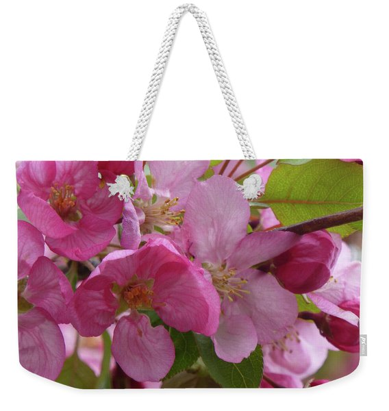 Weekender Tote Bag featuring the photograph Apple Blossoms by Cris Fulton