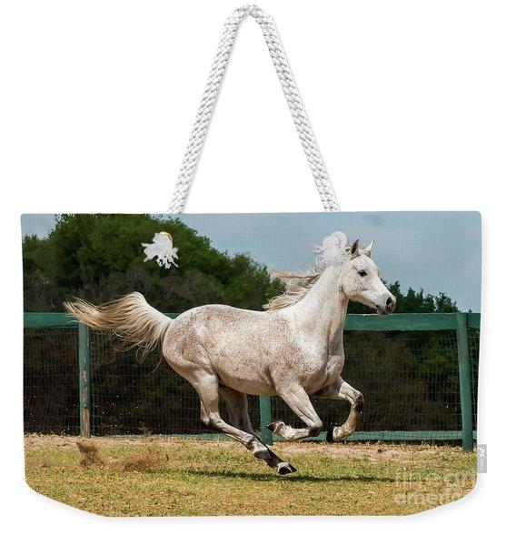 Arabian Horse Running Weekender Tote Bag