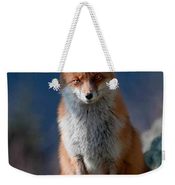 Are You My Friend Or Not? Weekender Tote Bag