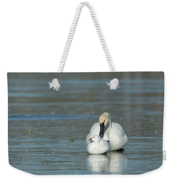 Are You My Mommy? Weekender Tote Bag