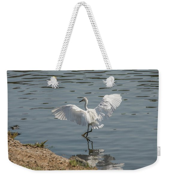 Are You Ready To Dance - Great Egret In Mtn View Ca Weekender Tote Bag