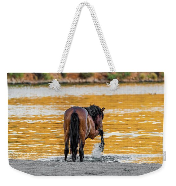 Arizona Wild Horse Playing In Water Weekender Tote Bag