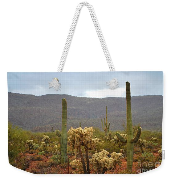 Arizona's Sonoran Desert  Weekender Tote Bag