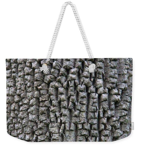 Armadillo Weekender Tote Bag