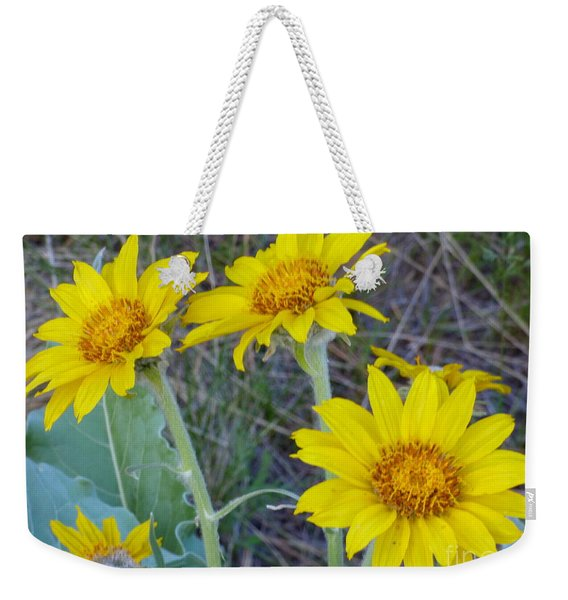 Arrowleaf Balsamroot Flower Weekender Tote Bag