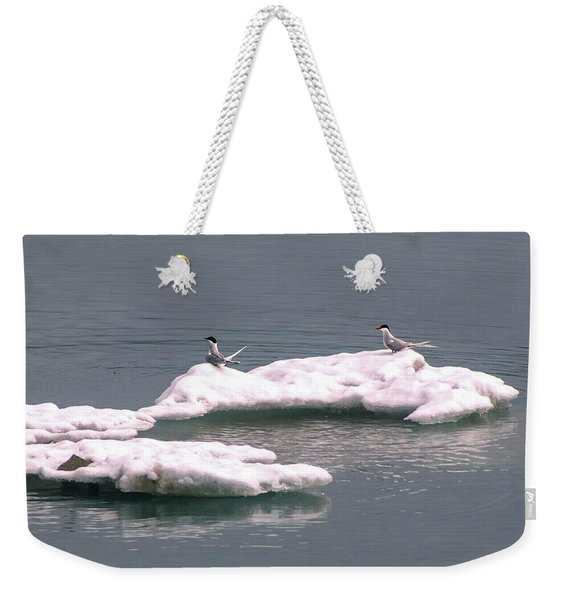 Arctic Terns On A Bergy Bit Weekender Tote Bag