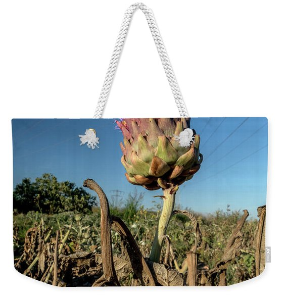 Weekender Tote Bag featuring the photograph Artichoke, 02 by Arik Baltinester