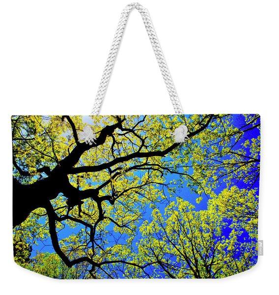 Artsy Tree Canopy Series, Early Spring - # 01 Weekender Tote Bag