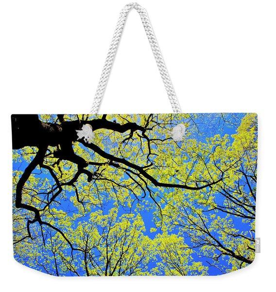 Artsy Tree Canopy Series, Early Spring - # 03 Weekender Tote Bag
