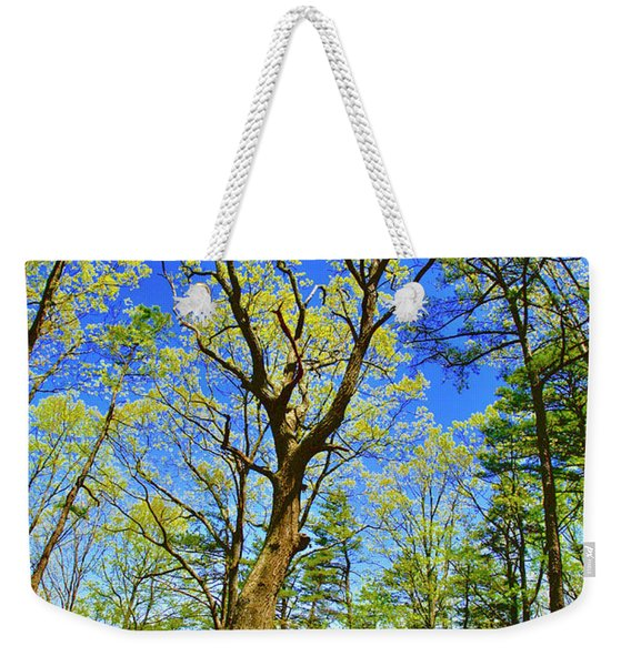 Artsy Tree Series, Early Spring - # 04 Weekender Tote Bag