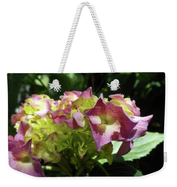 Weekender Tote Bag featuring the photograph Hydrangea Flowers Fit For A Fairy by Kristin Aquariann