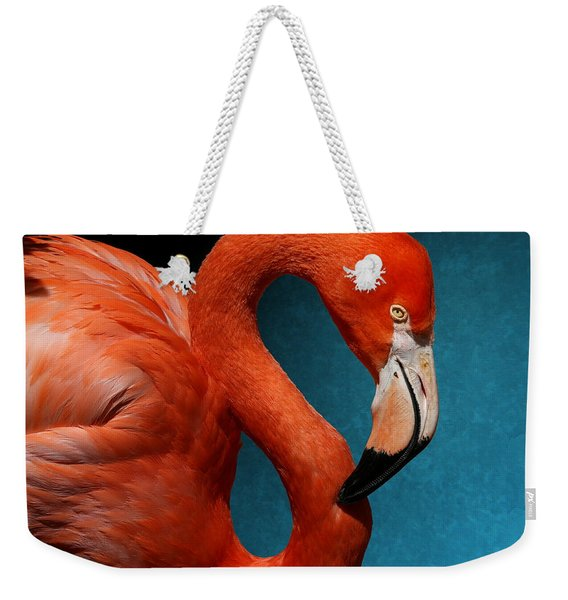 Profile Of An American Flamingo Weekender Tote Bag