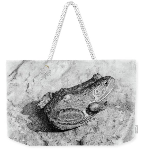 Frog On Rock Weekender Tote Bag