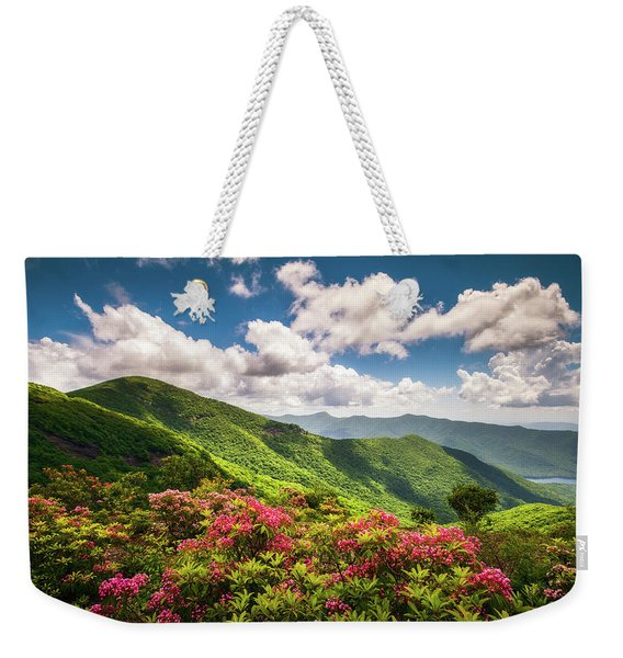 Asheville Nc Blue Ridge Parkway Spring Flowers Scenic Landscape Weekender Tote Bag