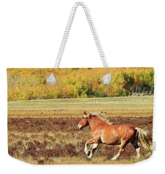 Aspen And Horsepower Weekender Tote Bag