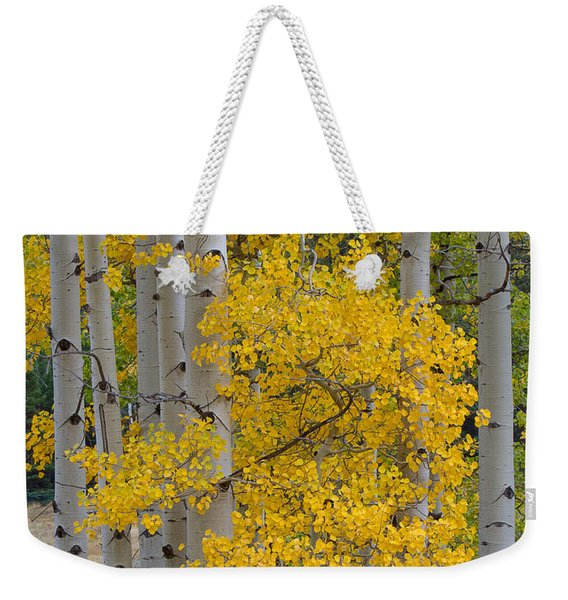 Aspen Bouquet Weekender Tote Bag