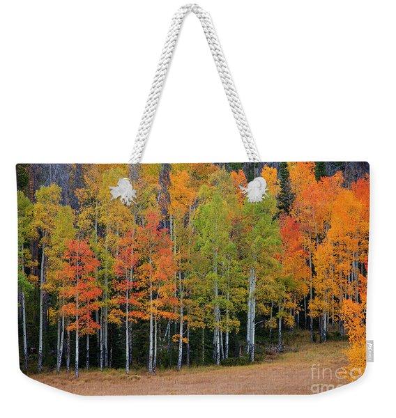Aspen Color Weekender Tote Bag
