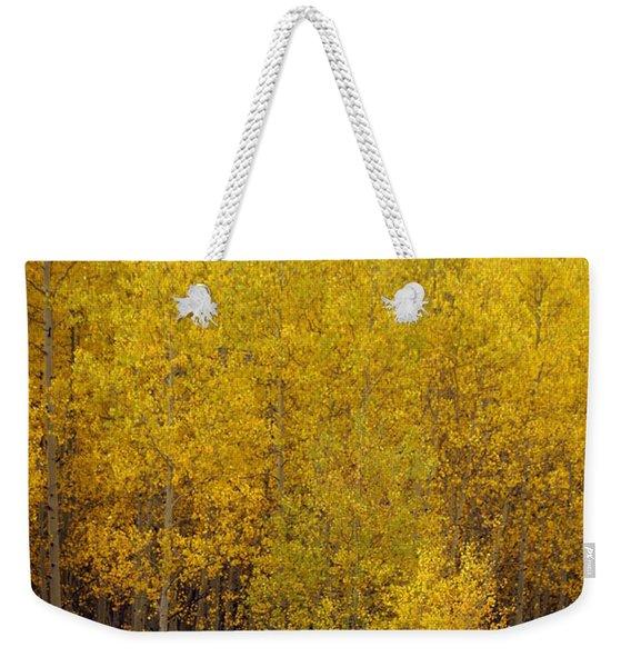 Aspen Fall 2 Weekender Tote Bag