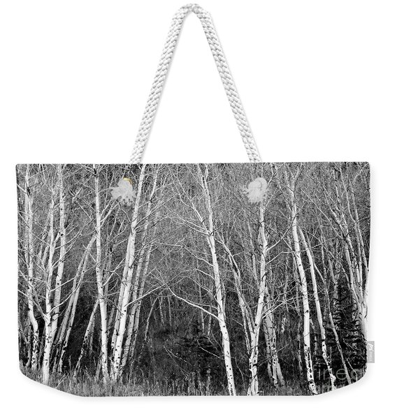 Aspen Forest Black And White Print Weekender Tote Bag