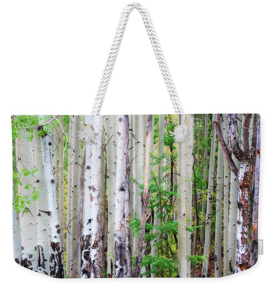 Aspen Grove In The White Mountains Weekender Tote Bag