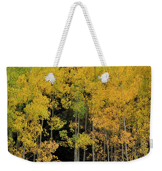 Weekender Tote Bag featuring the photograph Aspen Haven  by Ron Cline