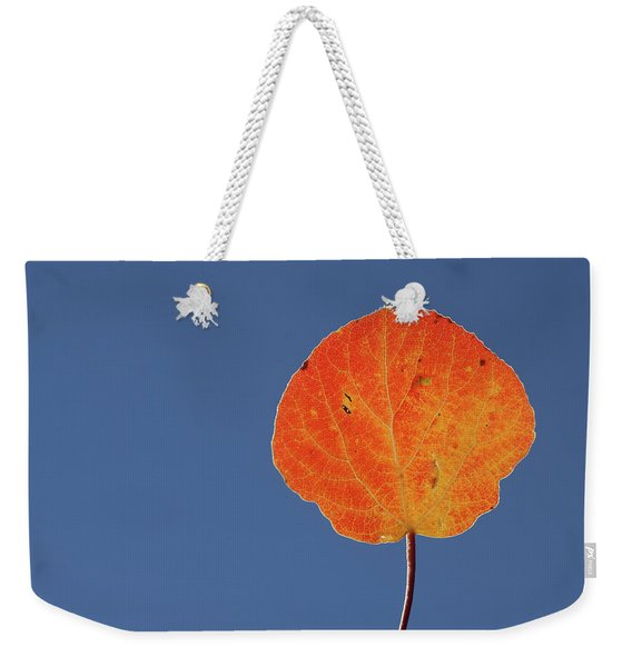 Aspen Leaf 1 Weekender Tote Bag