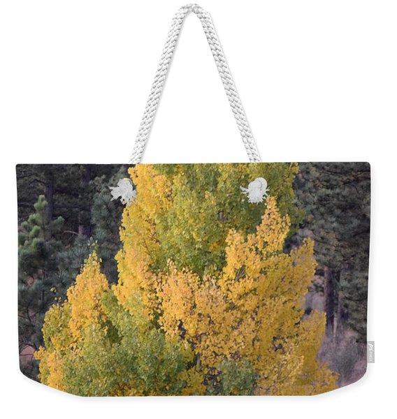 Aspen Tree Fall Colors Co Weekender Tote Bag