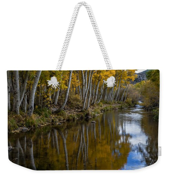 Aspens Reflected Weekender Tote Bag